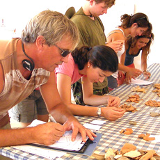Classifying roman pottery in the archaeological dig of Sanisera