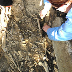 Students digging human remains
