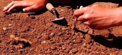 Sanisera Roman City Dig