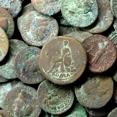 Digging lab roman coins faunal remains collection of for Things found in soil