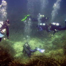 Students practicing underwater archeology in the Sanisera Field School