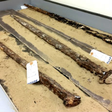 Singular swords discovered during the excavation of the site